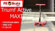 Трёхколёсный самокат   Triumf Active MAXI   Обзор   Характеристики